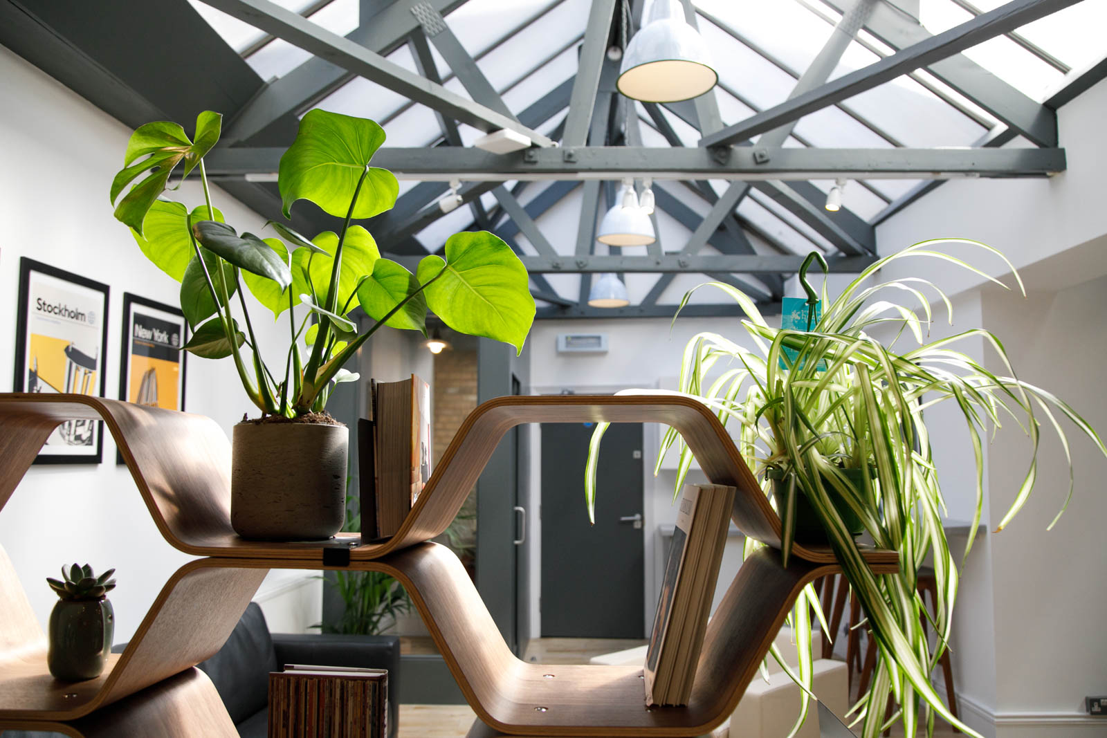 Plants in London office spaces
